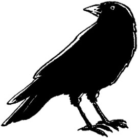 My favourite drawings – crow