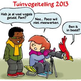 Tuinvogeltelling 2013