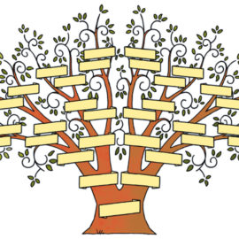 Stamboom – Family tree