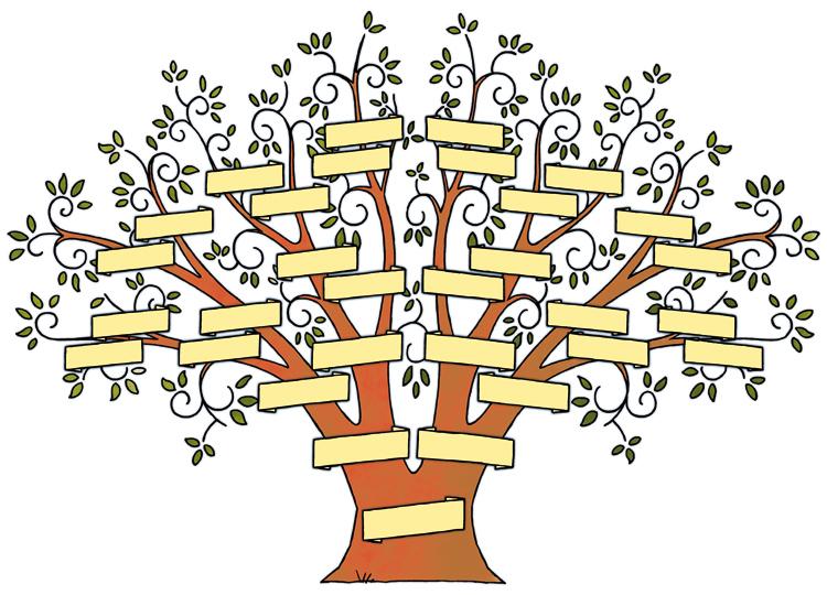 stamboom family tree roger klaassen illustratie