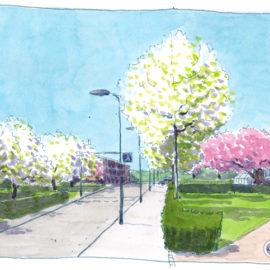 Spring – Lente (2)