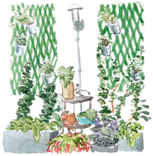 Garden sketch – Tuinschets